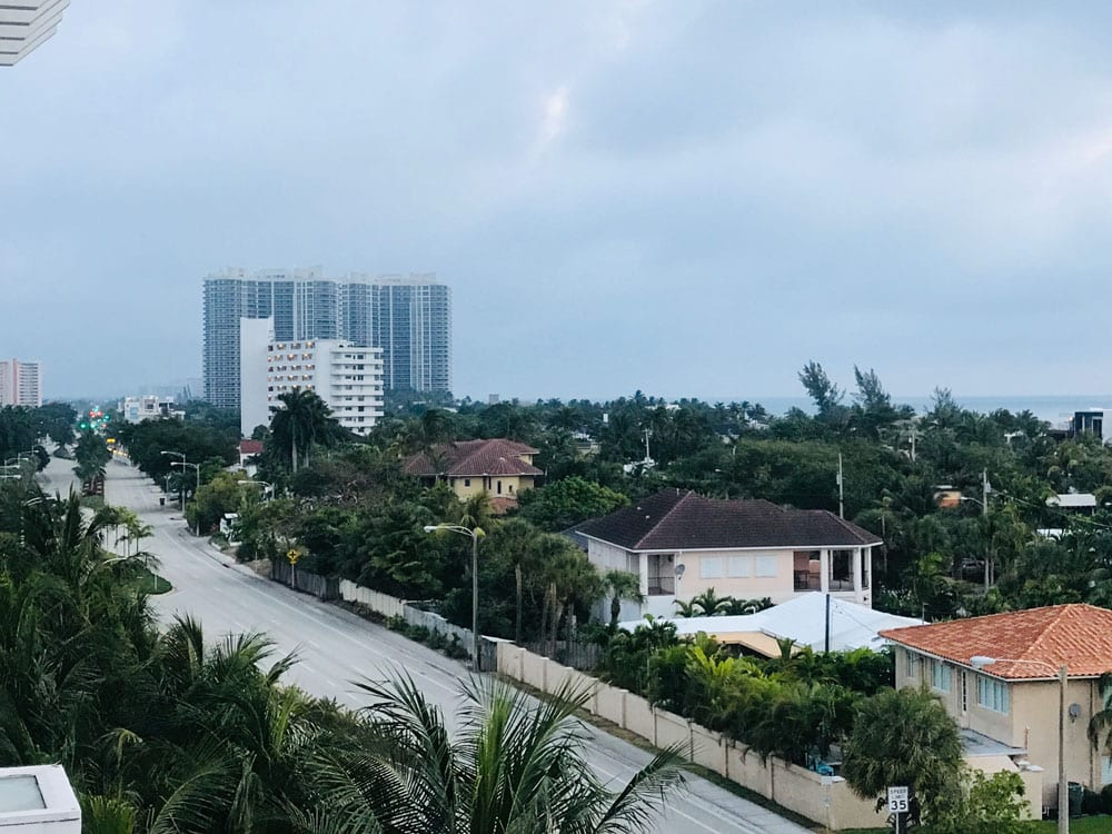 Road and properties surrounded by palm trees
