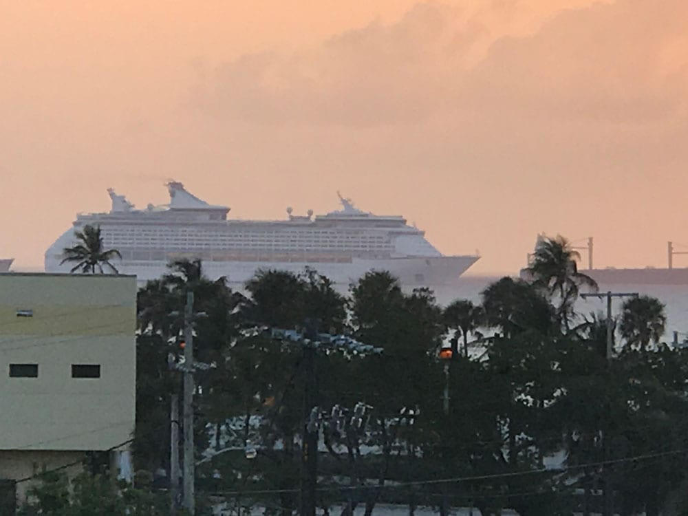A big white ship on the ocean almost covered by the palm trees in the beach