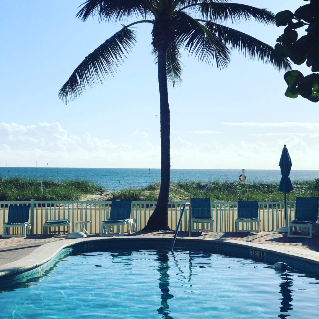Palm tree near a pool and a beach