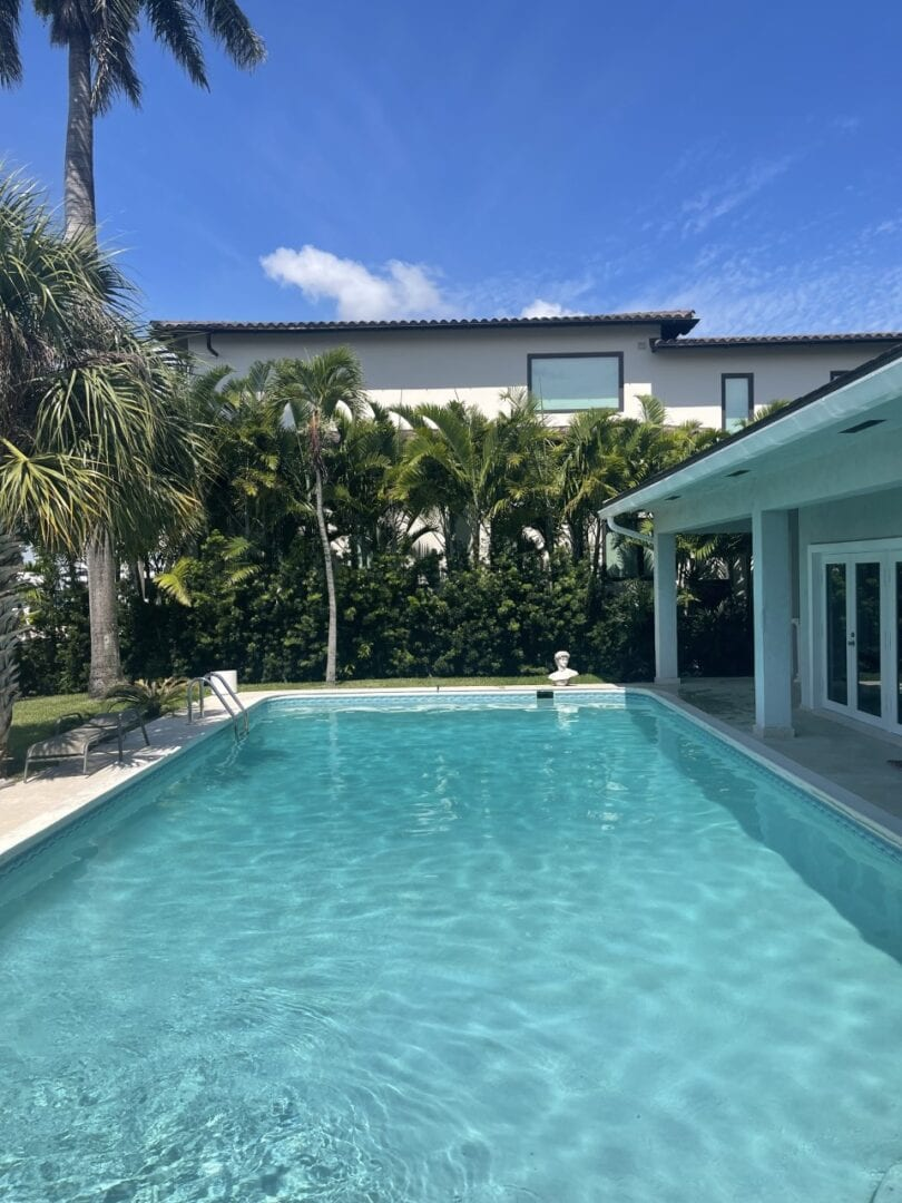 Rectangular pool surrounded by palm trees and a white patio on the right side
